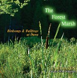 Forest Marsh Cover