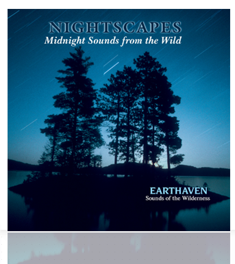 Nightscapes Cover